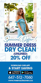 Meena-Cleaners-Post-Banner-Design-1a.jpg