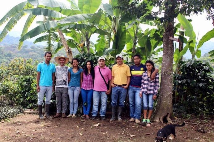 Cooperativa Asopep, Planadas, Tolima. .j
