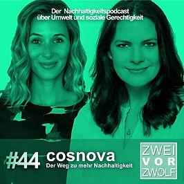 44 cosnova Website.jpg