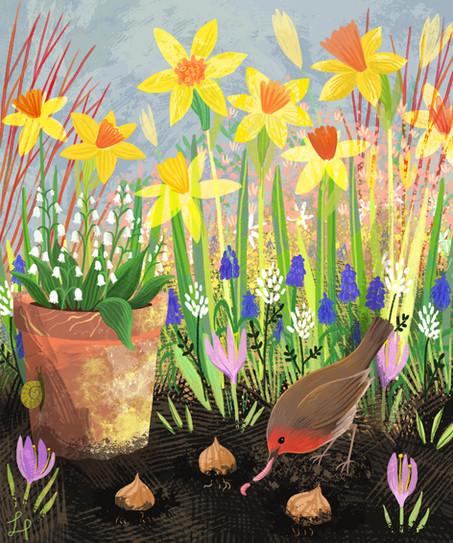 Daffodils and Robin