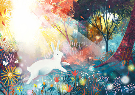 White Woodland Rabbit