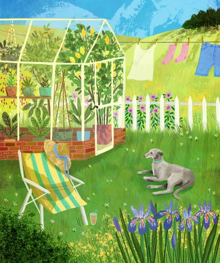 Summer Garden With Greyhound