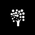 Logo_KG_Baum_solo.png