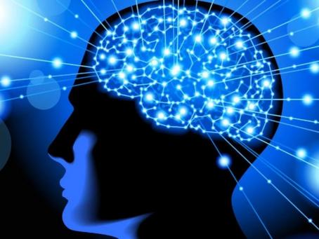 Matriz, escola de Alphaville, aplica neurociência no ensino e melhora desempenho de alunos