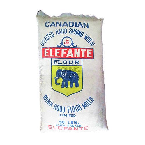 ELEFANTE FLOUR 50LB