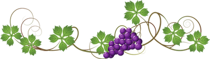 211-2113738_grape-vine-transparent-backg