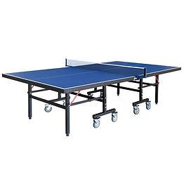 Back Stop Ping Pong.jpg