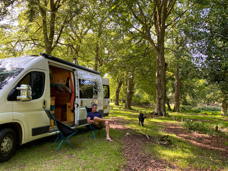 An Open Letter to Camping in the Forest