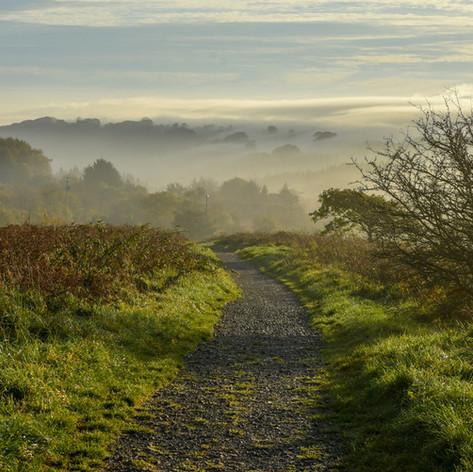 Pathway into the mist.jpeg