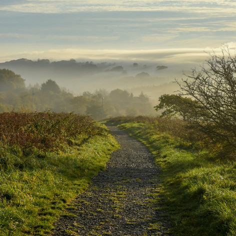 011 Pathway into the mist by Philip Dee.
