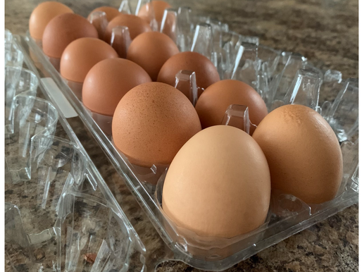 Are Eggs Really That Bad?
