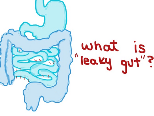 What is leaky gut? Filling in the Gaps with GLIM
