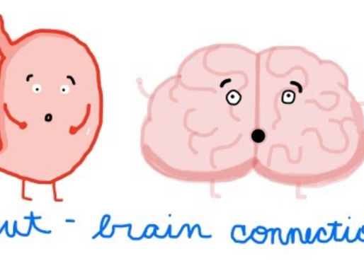 Stress, Brain, Gut: What's the Connection?