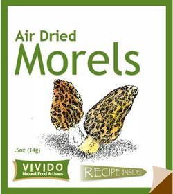 Morels 4.JPG
