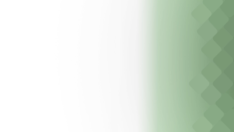 web evergreen10副本.jpg