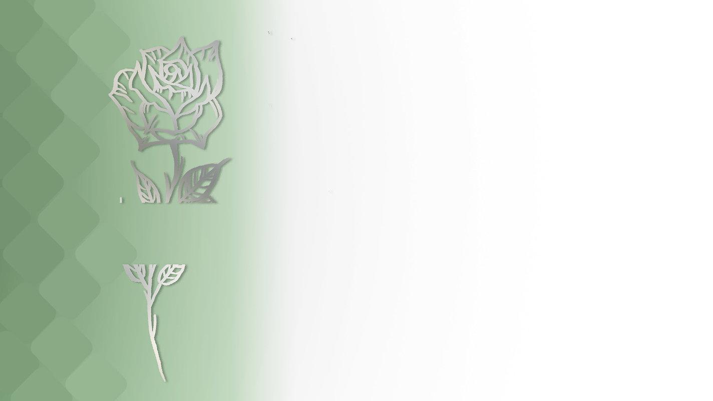 web evergreen1副本.jpg