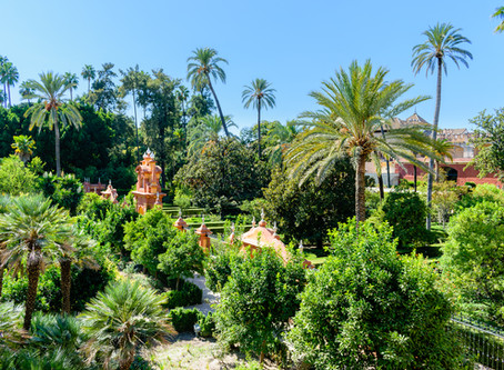 6 places to visit in Seville