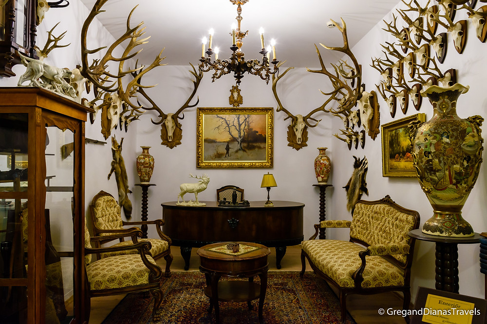Hunting trophies, Hunting museum, Festetics Castle, Keszthely Hungary, Travel blog, Travel blogger, Travel photography
