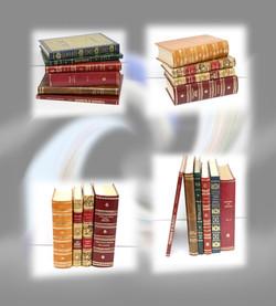 Exemplo Livros Encadernados