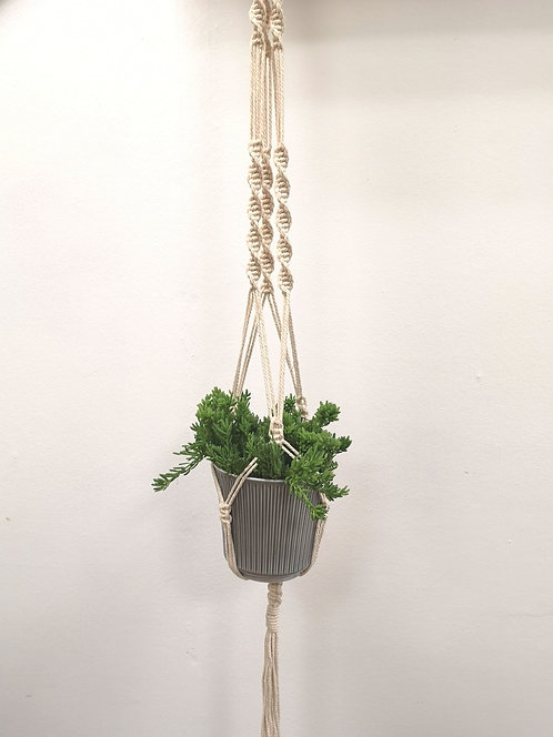 Forget-Me-Knot Macrame Plant Hanger