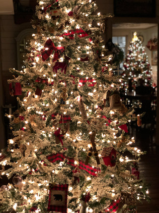 Fun fact - we LOVE Christmas!