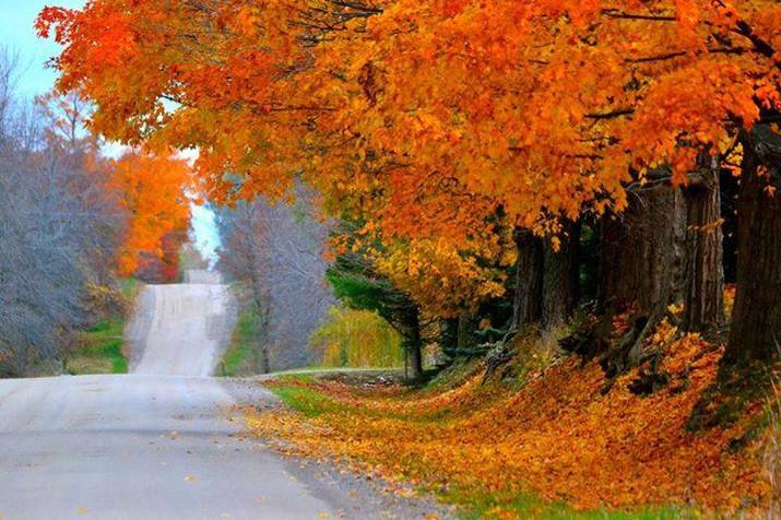 Sanilac County Fall.jpg