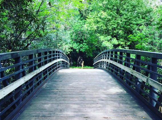 Twin Pine Park Bridge.heic