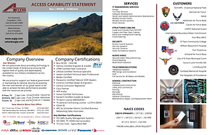 Access capability statement  2.12.21.png