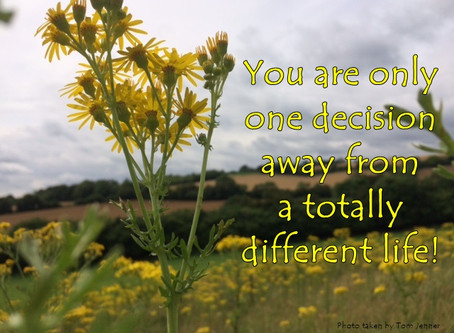 Own your decisions!