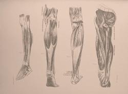 JEMNÁ VINJÁSA JÓGA: chodidla, kolena, kyčle