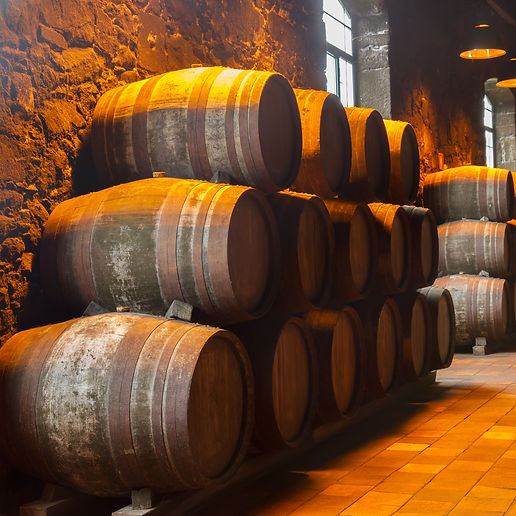 cellar with row of traditional  aged  wo