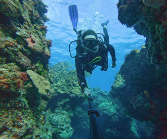 Mexico's Best Scuba Diving - COZUMEL