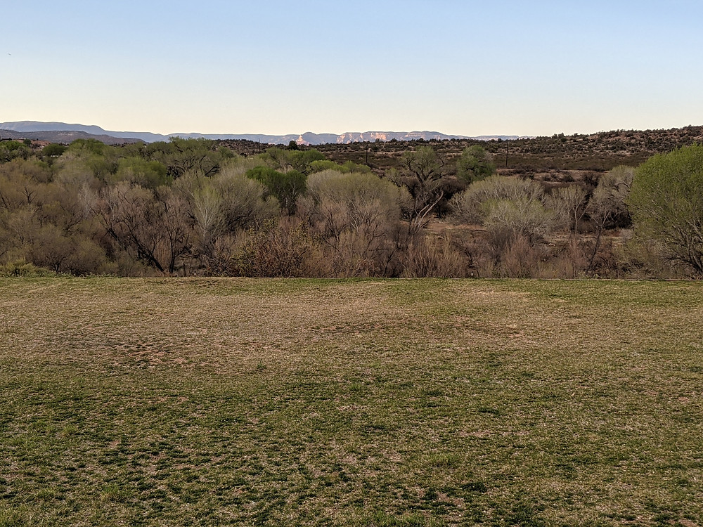 View toward the Verde River, showing barely green trees beyond the brown grass.