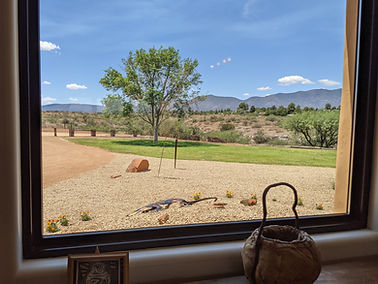 Great Room view of the front yard and, beyond it, the Black Hills.