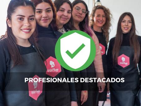 Profesionales Destacados GuapApp v/s Profesionales