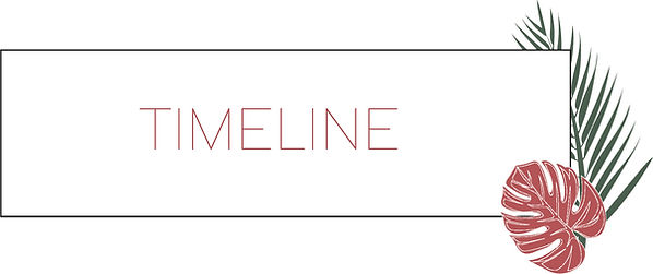KICK - Timeline.jpg