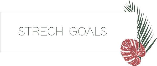 KICK - STRECH GOALS.jpg