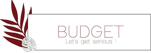 KICK - budget.jpg