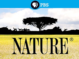 PBS Nature.jpg