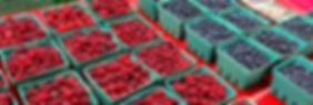 fruit-IMG_4065-588x199.jpg