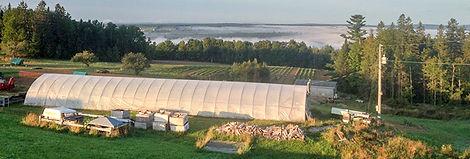 Good-Spring-Farm-History-4-588x199.jpg