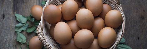 eggs-117-588x199.jpg