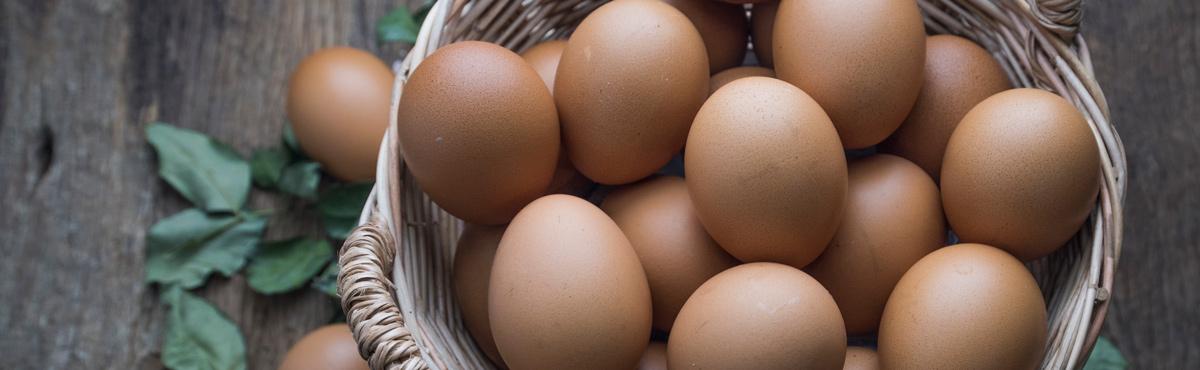 eggs-1200