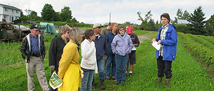 Farm-Day-Good-Spring-Farm-387x165.jpg