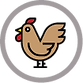 organic-chicken-Good-Spring-Farm-105.png