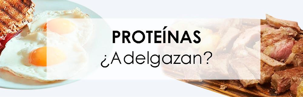 Proteínas_adelgazan