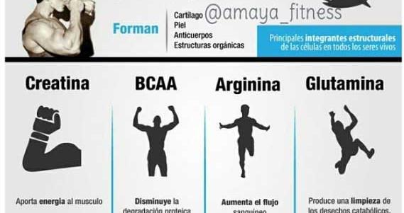 Fitness   Proteina completas