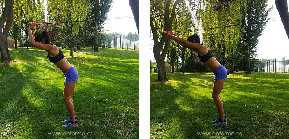 triceps elasticos 3