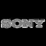 sony_gray_tp_bkg copy.png