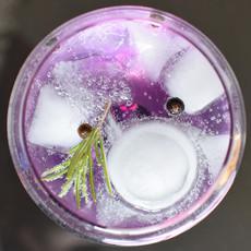 gin-tonic-1859464_1920.jpg